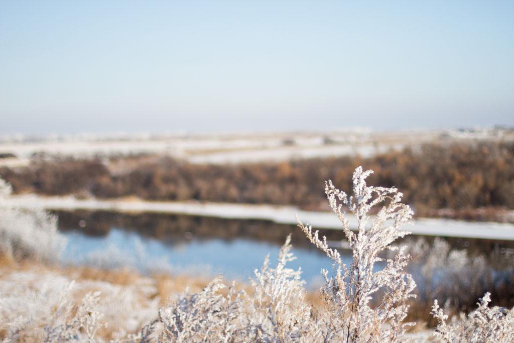 20141223 Saskatoon Christmas 2014 LJ 0355.jpg