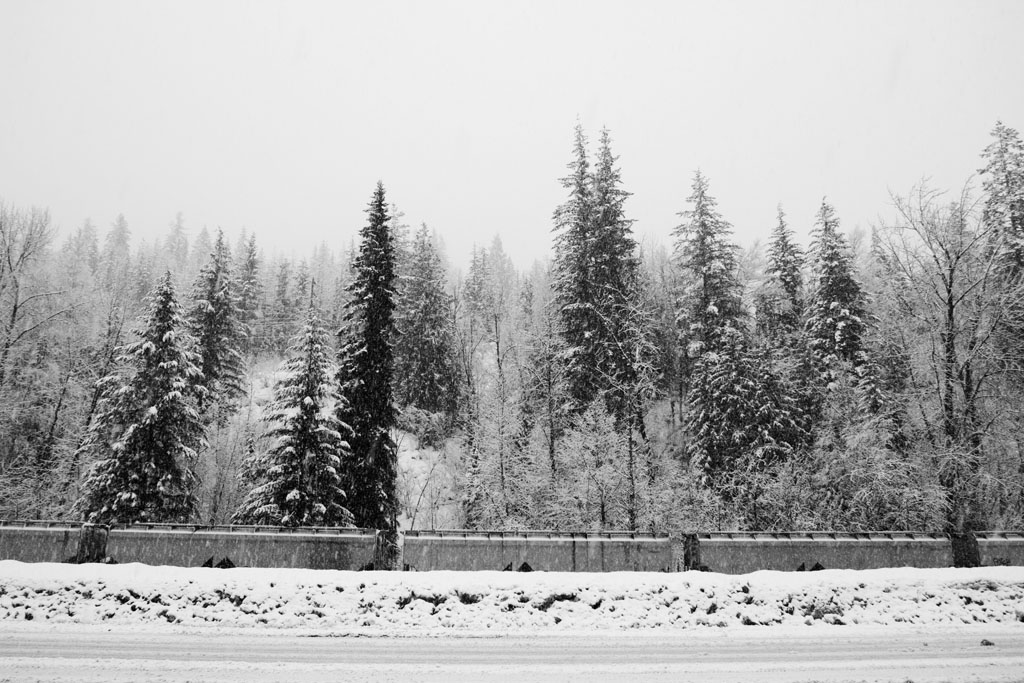 20150205 West Coast Road Trip LJ 0004(B&W).jpg