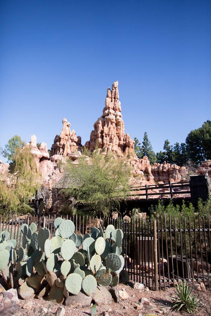 20180201 Disneyland 2018 0161.jpg
