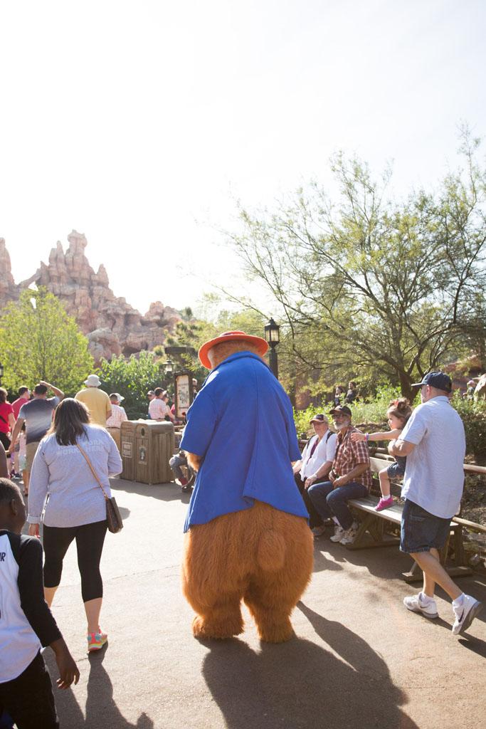 20180201 Disneyland 2018 0466.jpg