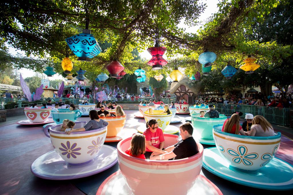 20180201 Disneyland 2018 0477.jpg