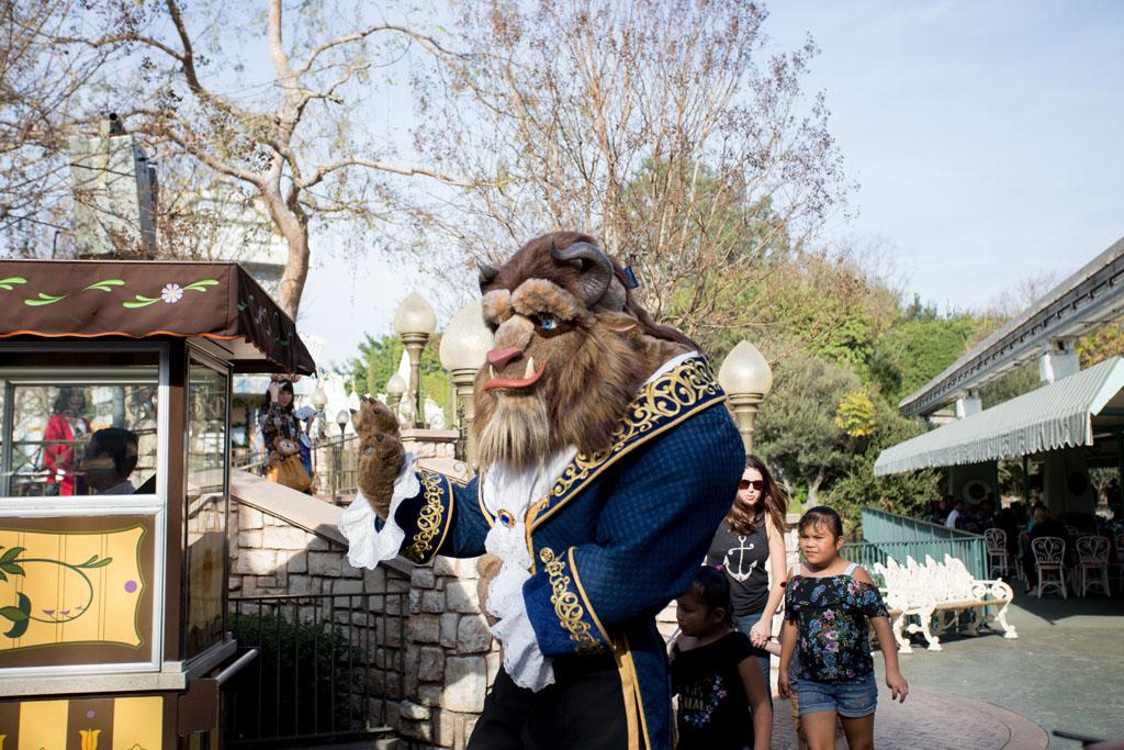20180201 Disneyland 2018 0489.jpg