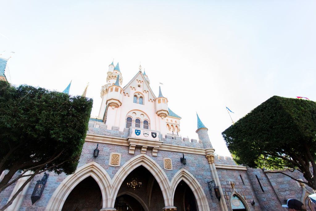 20180201 Disneyland 2018 0332.jpg