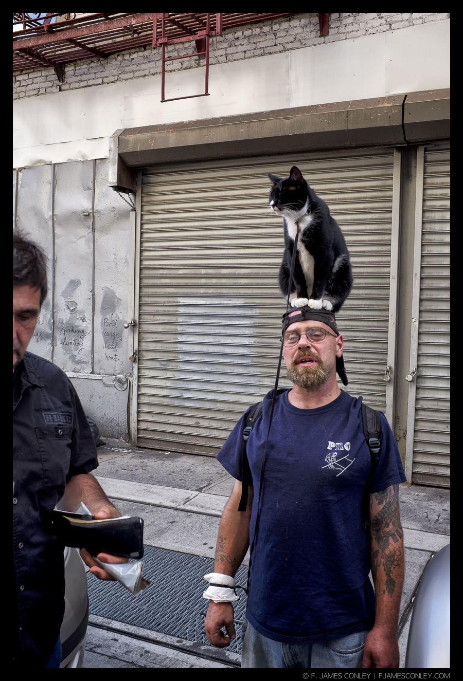 A New Yorker walks the streets with a cat on his head.