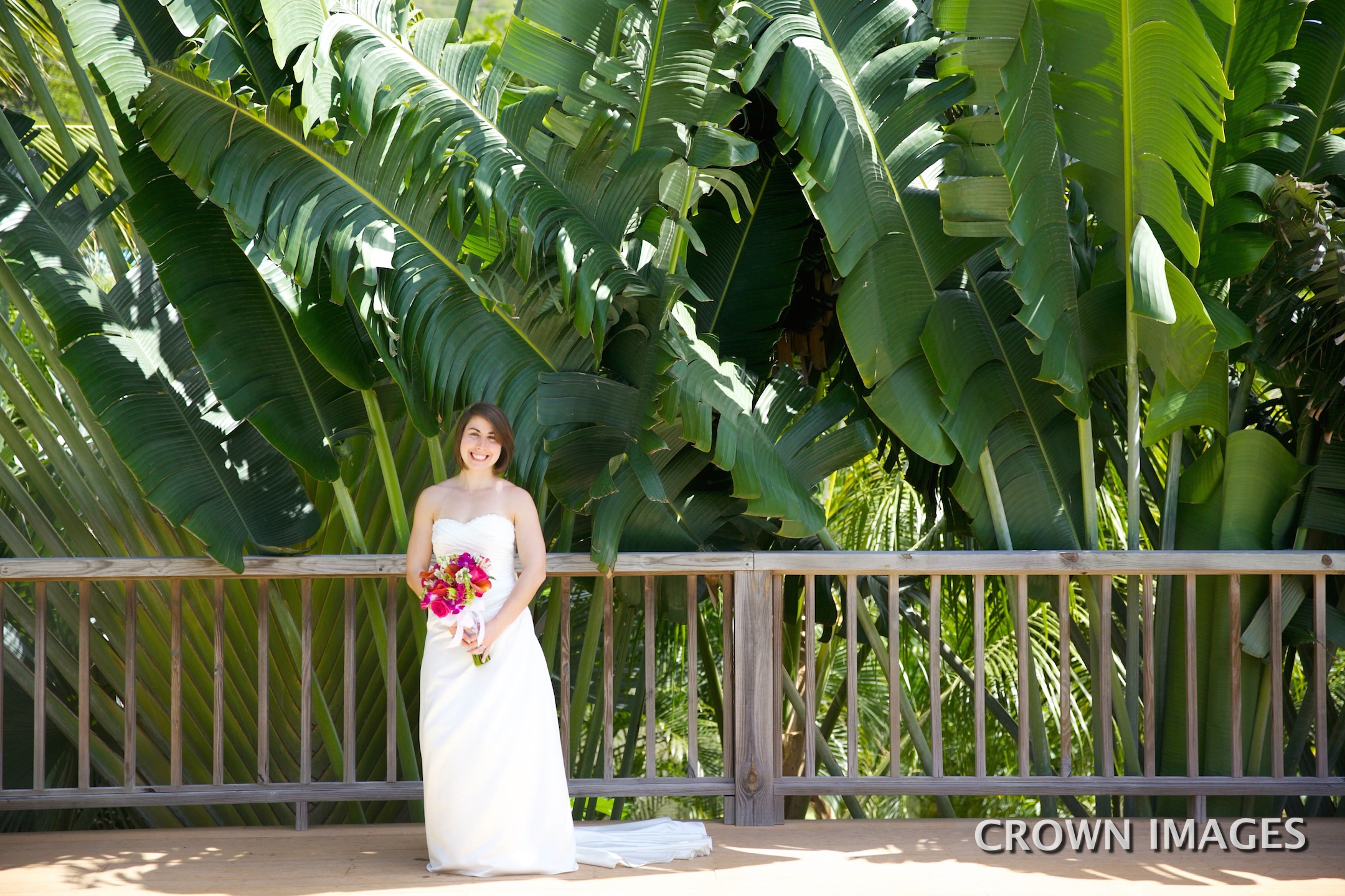 crown images virgin islands photographer