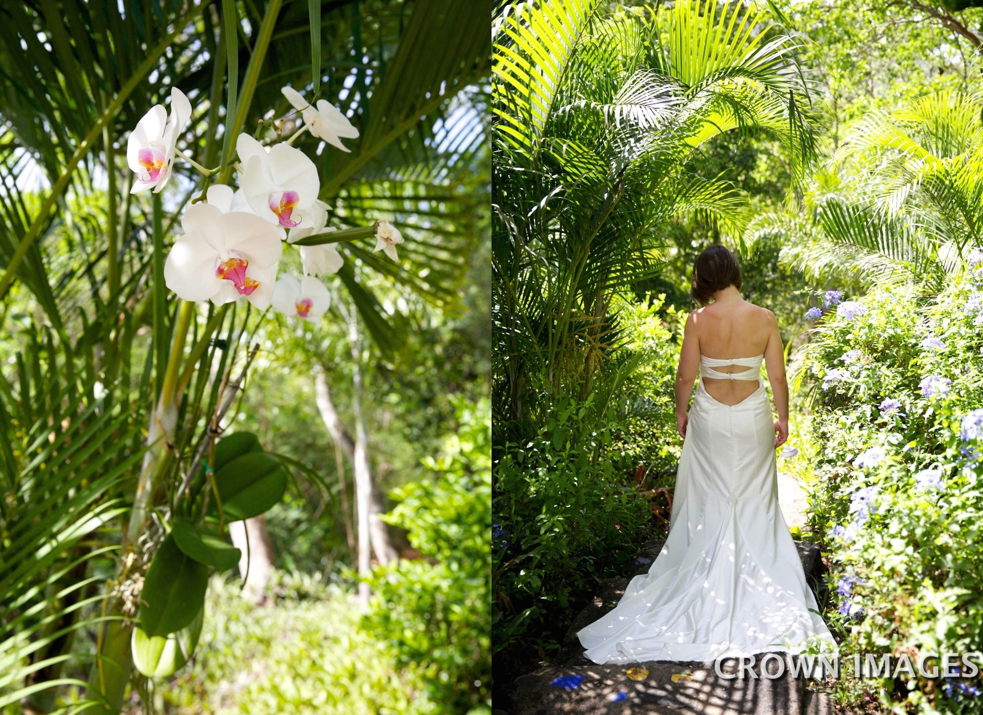 bridal portraits on st john