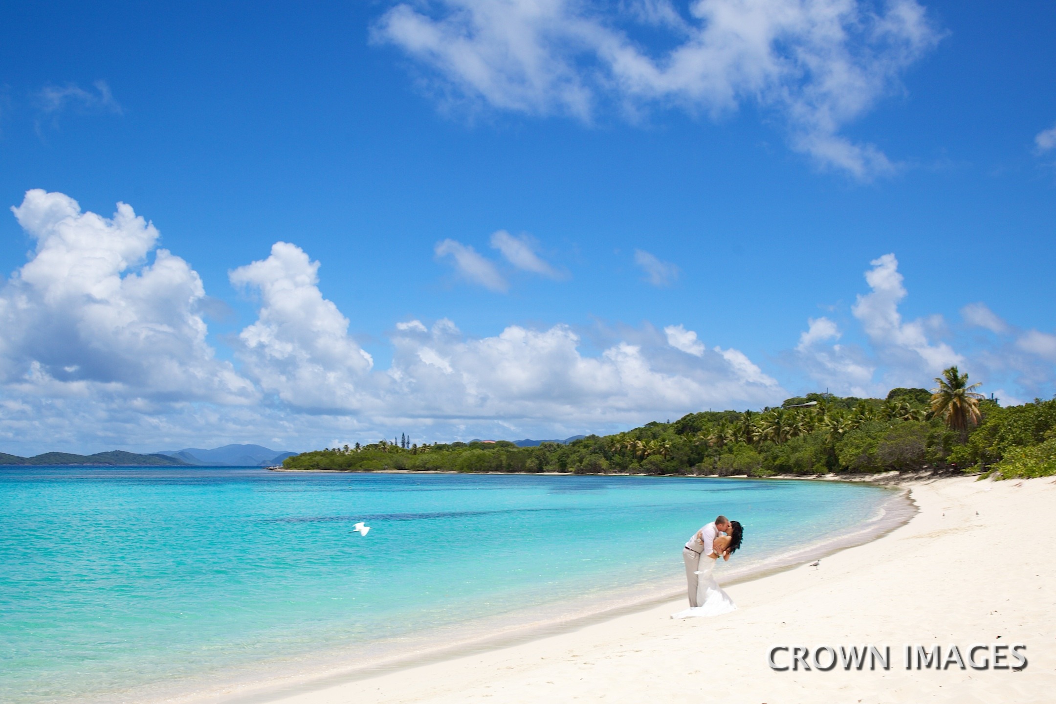 best beach wedding photos by crown images