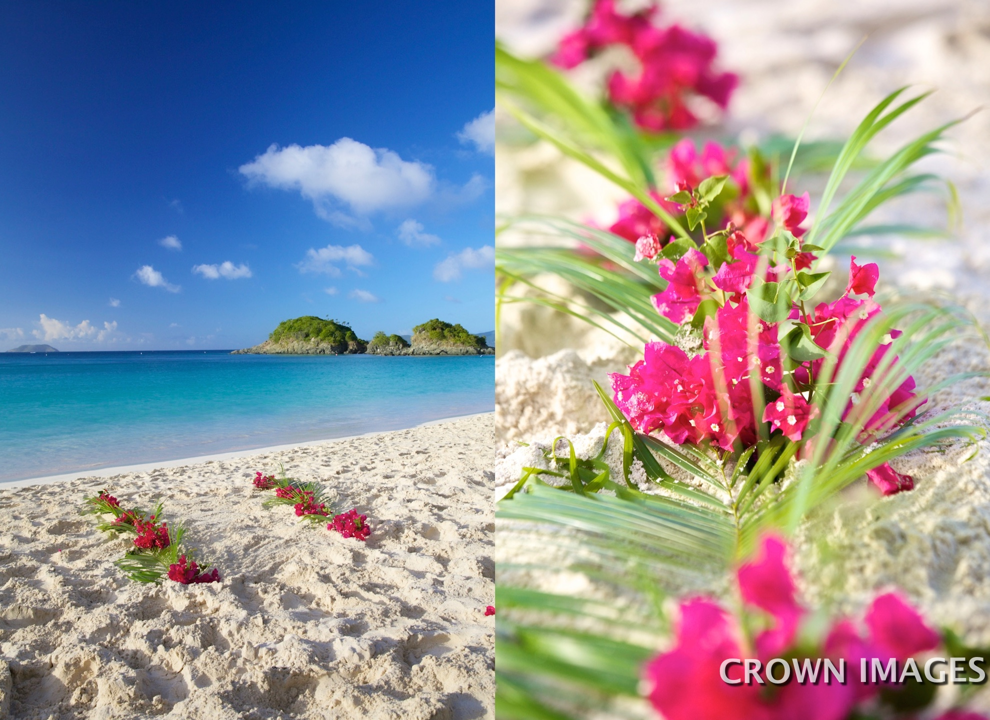 wedding flowers on the beach by passion flowers of st john