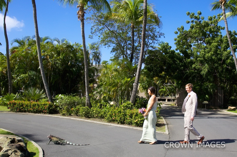 wedding photographer on st john usvi