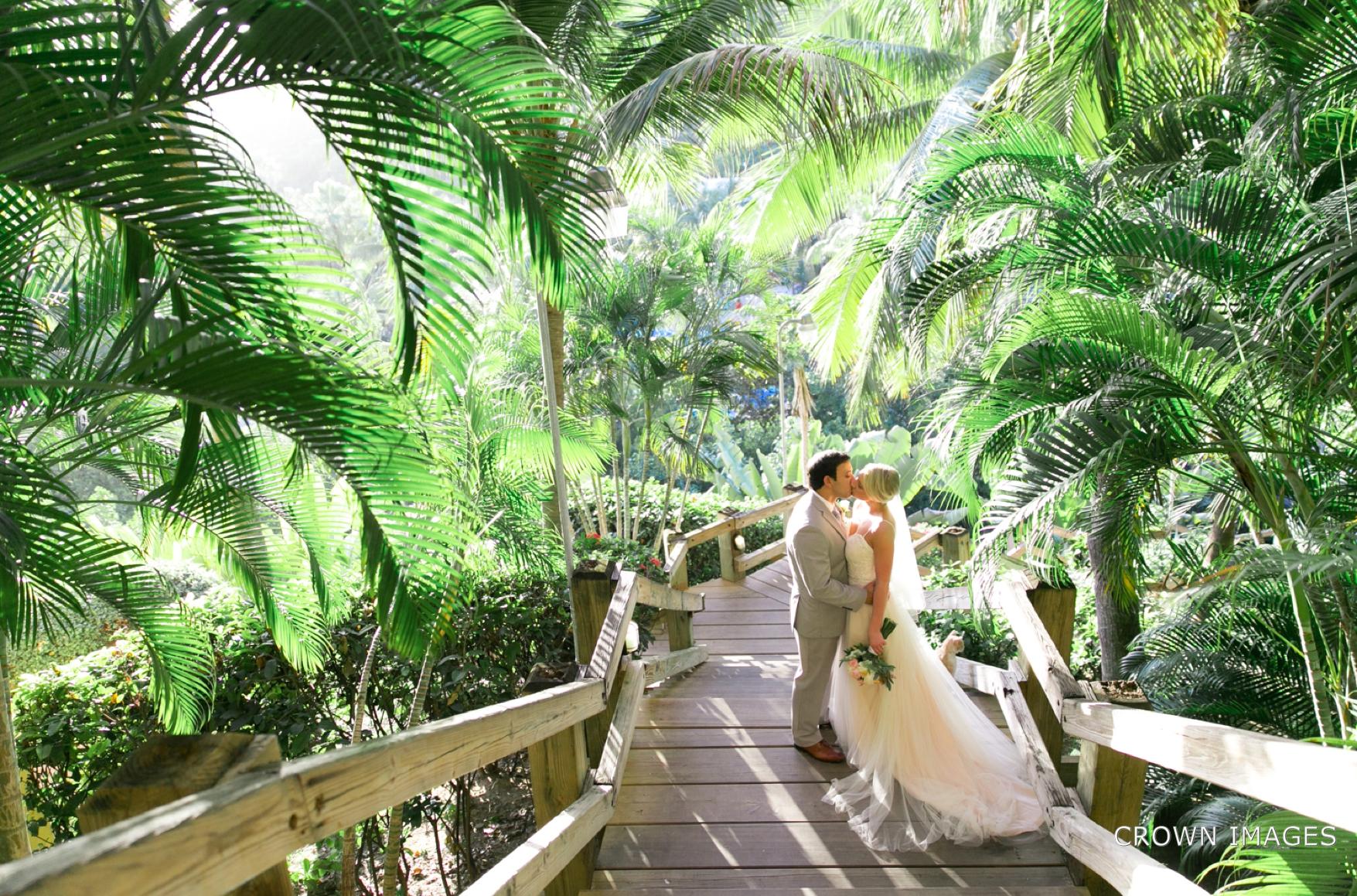 virgin_islands_wedding_photographer