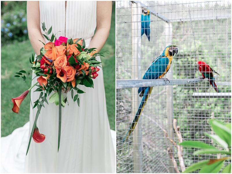 st-thomas-wedding-photographer-virgin-islands
