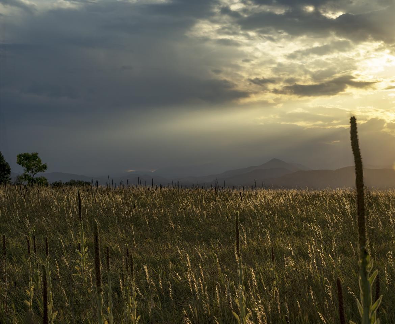 West Field Sunset.jpg