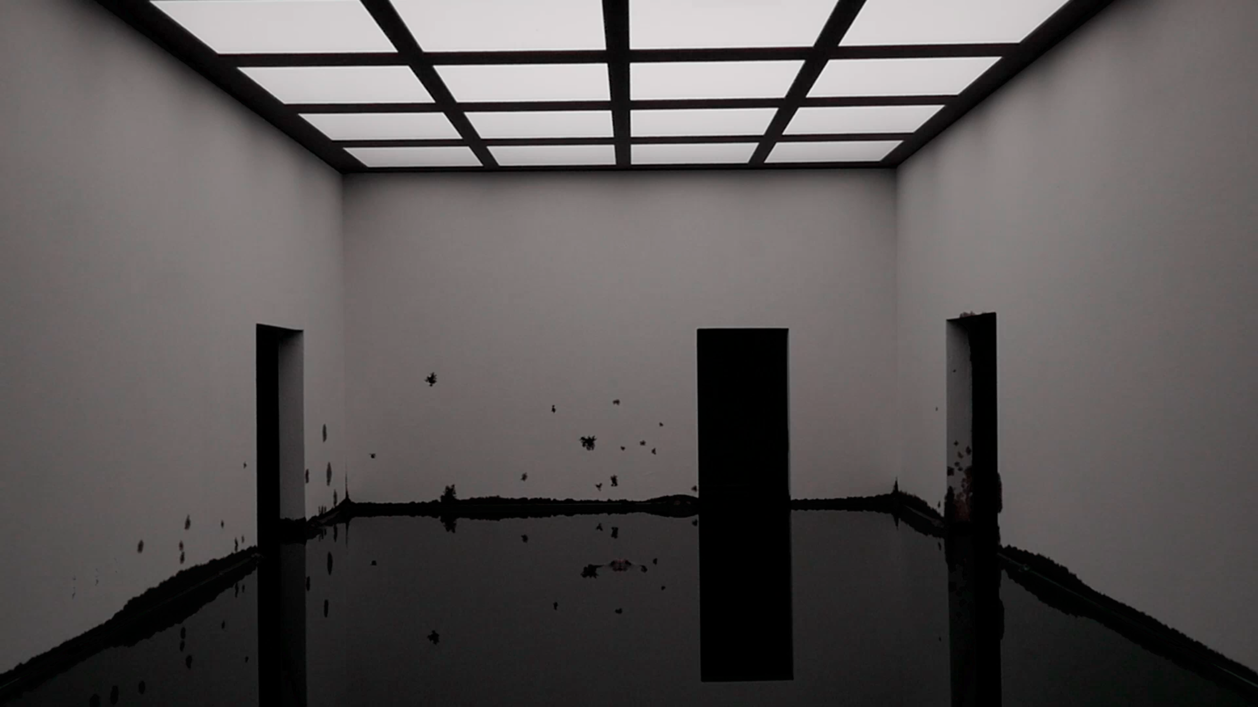 "Still from ""Dark Matter,"" by Bernd Oppl & Bogomir Doringer"
