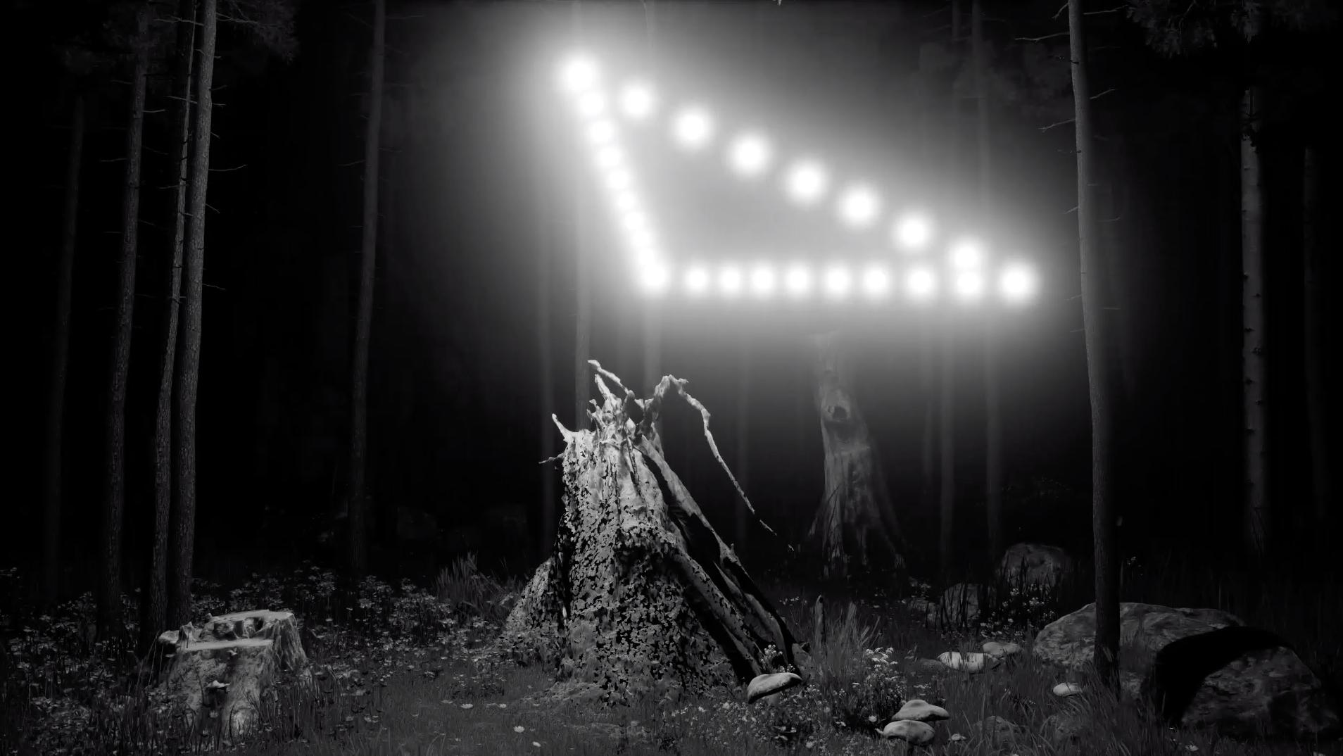 "Gabor Kitzinger + Alex Hamadey, ""Dark Nights / Black Cats"""
