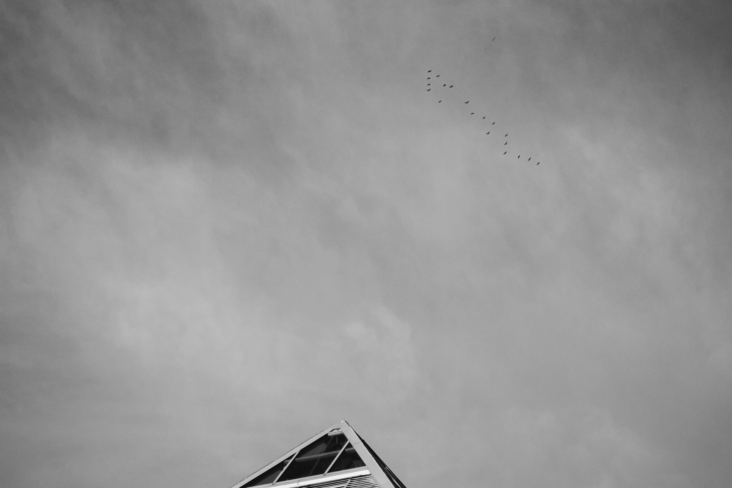 Muttart Conservatory Sky