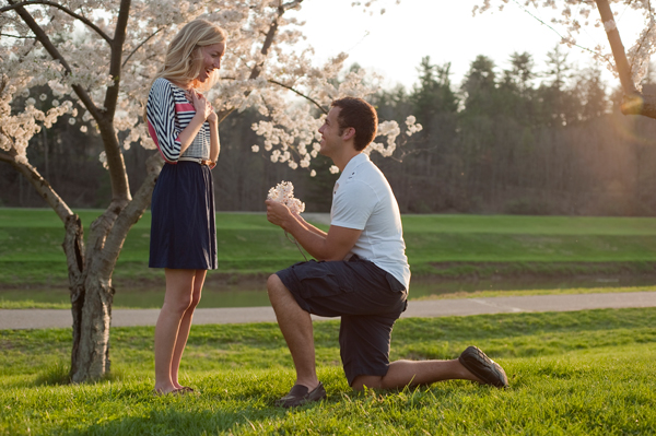 © Gregory Bodwell (not the real proposal)