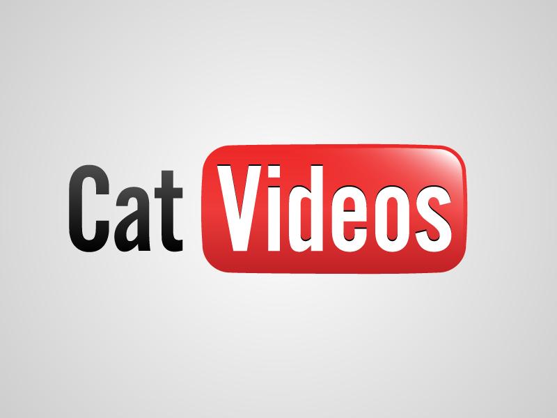 catvideos.jpg