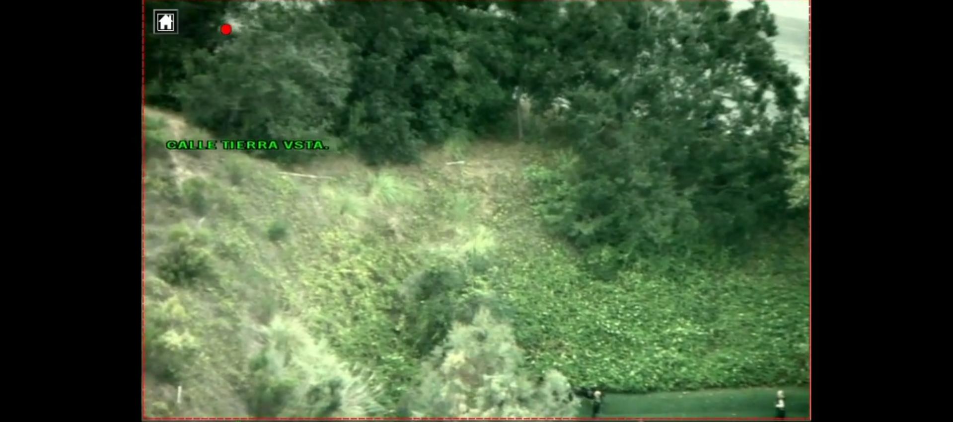 above: police target obscured by vegetation