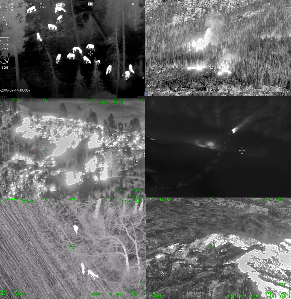 Aerial Infrared (AIR) - OAR is at the forefront of the use of aerial infrared (AIR) technology in wildlife/wildfire and other natural resource surveys.We offer a military-grade AIR and visible-spectrum video imaging system that allows us to detect and identify heat sources accurately from safe altitudes. Currently, this is the only cooled-AIR and visible-spectrum system of it's level in the country, that is available for use in wildlife and wildfire surveying.