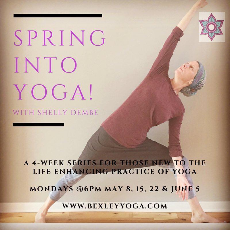beginner yoga.jpg