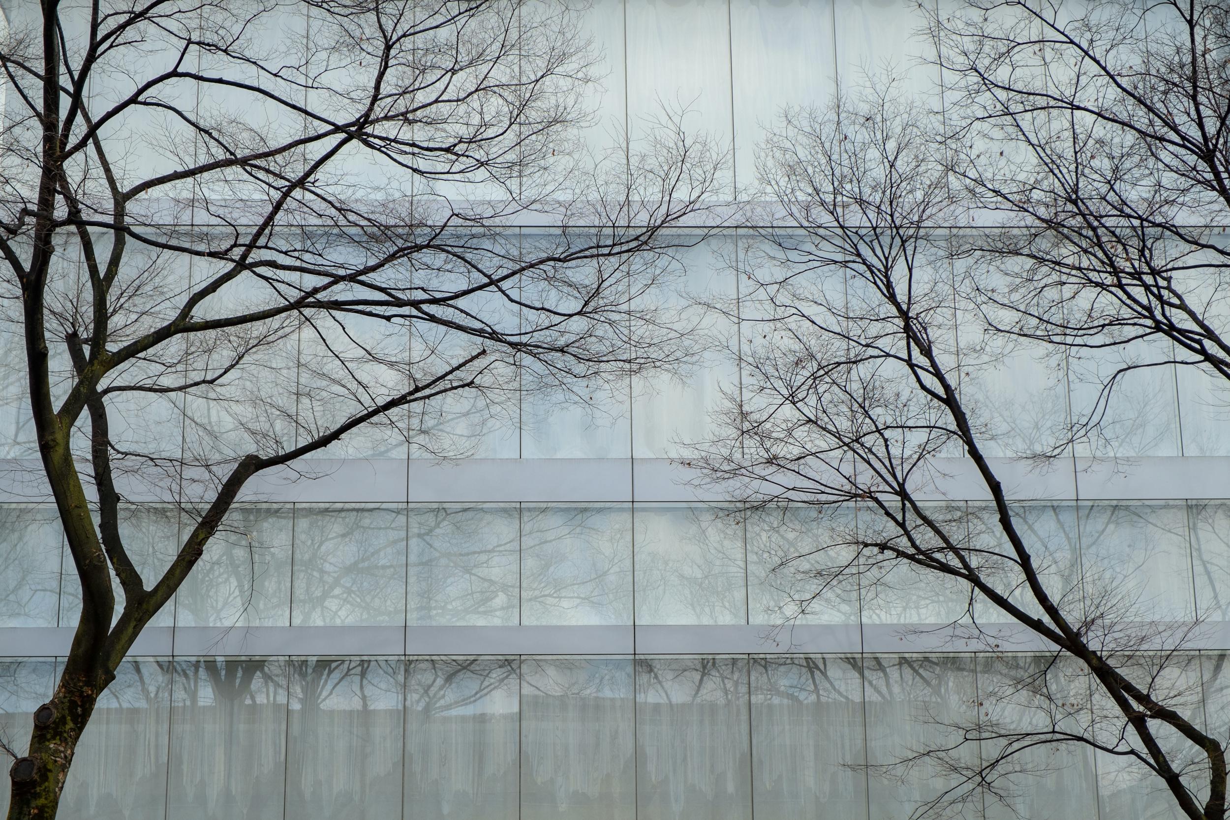 Tokyo2-141.jpg