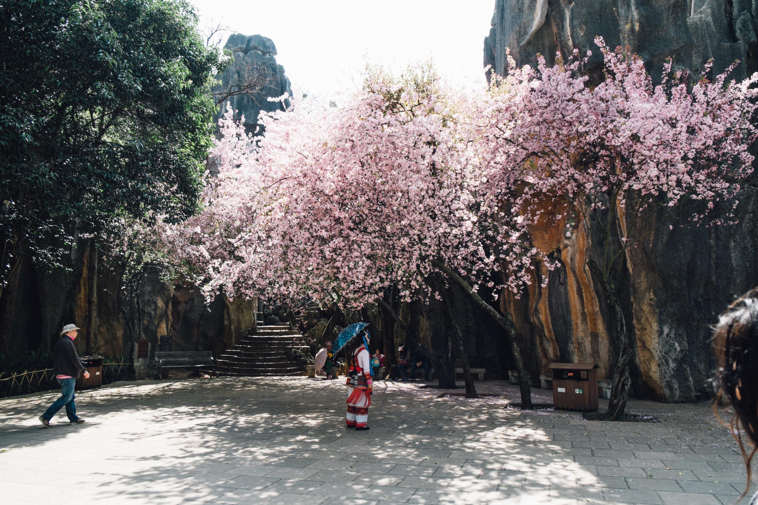 Kunming-065.jpg