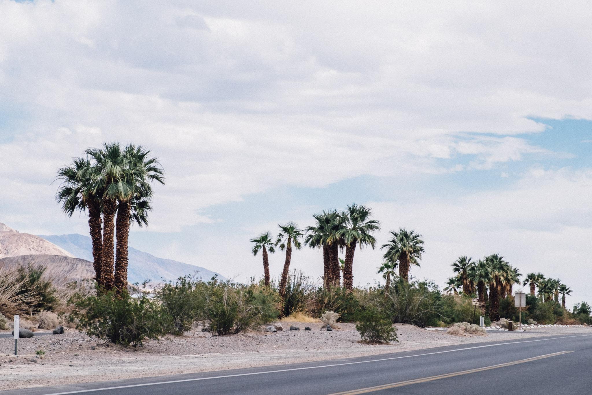 Death Valley-160.jpg