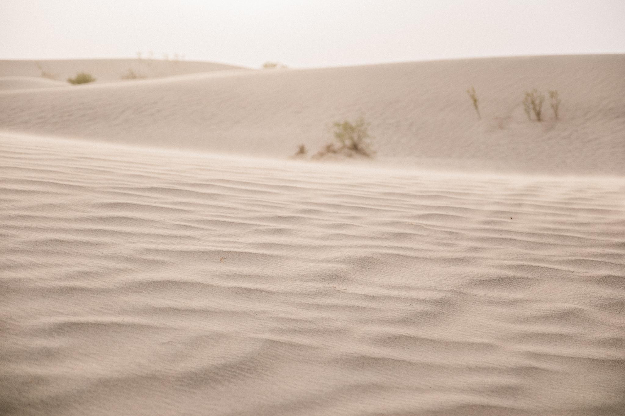 Death Valley 2-80.jpg
