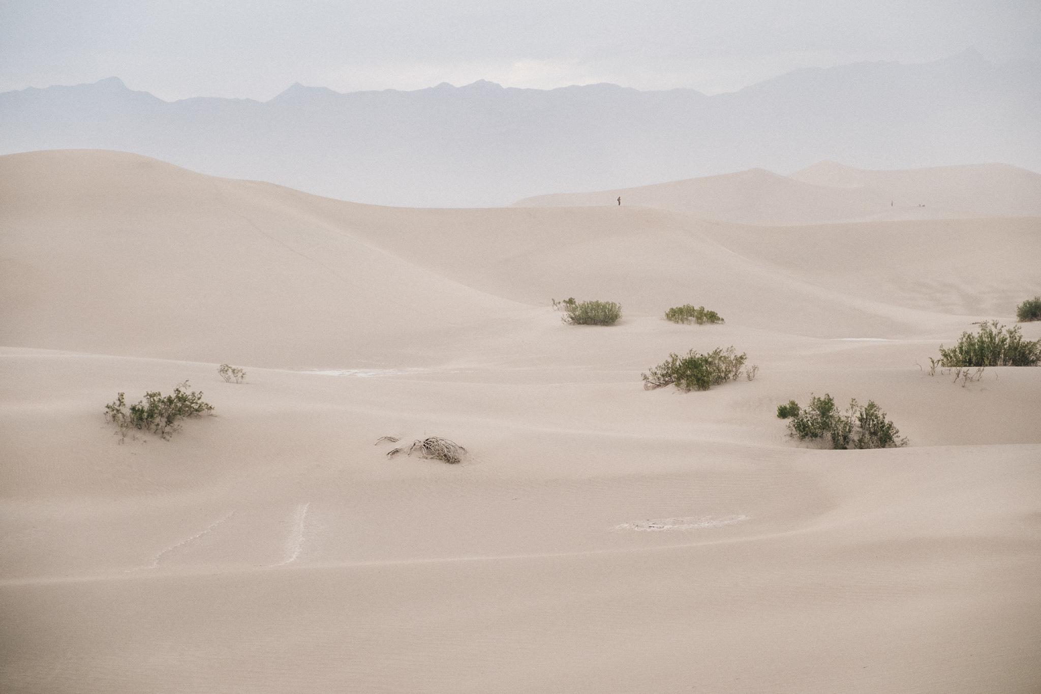 Death Valley 2-110.jpg