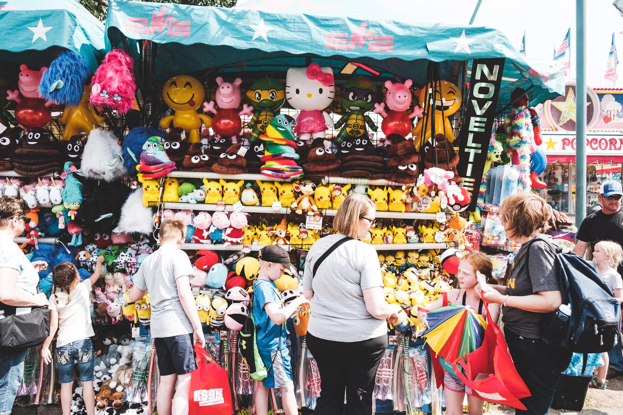 state fair-15.jpg