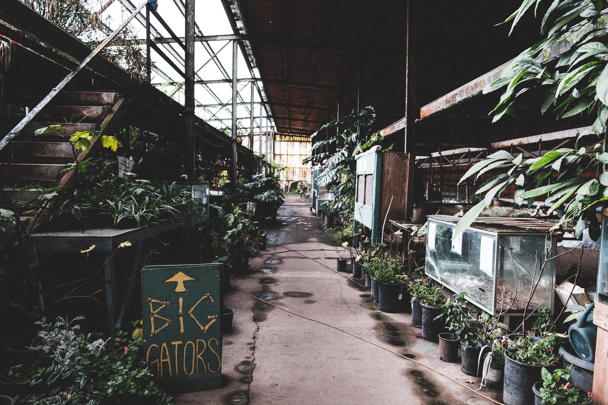 gatorfarm-026.jpg