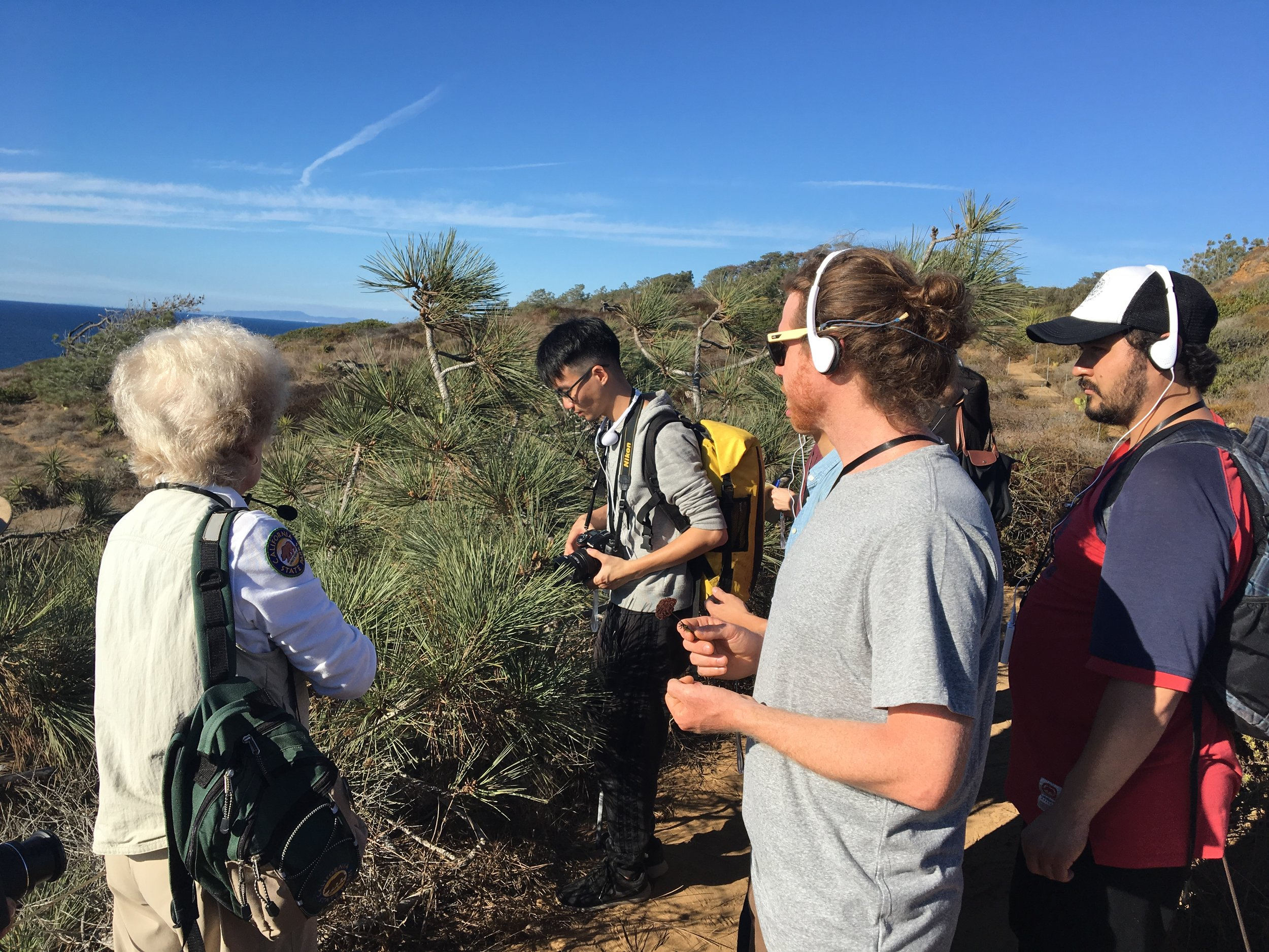 Octber 2017 Nature Walk - Torrey Pines State Natural Reserve