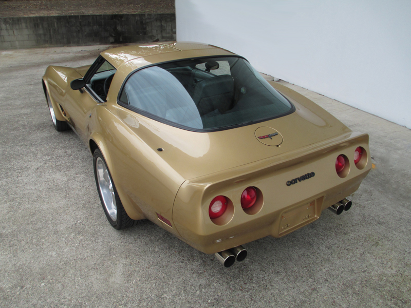1981 Chevrolet Corvette Stingray - ol school garage  (60).jpg