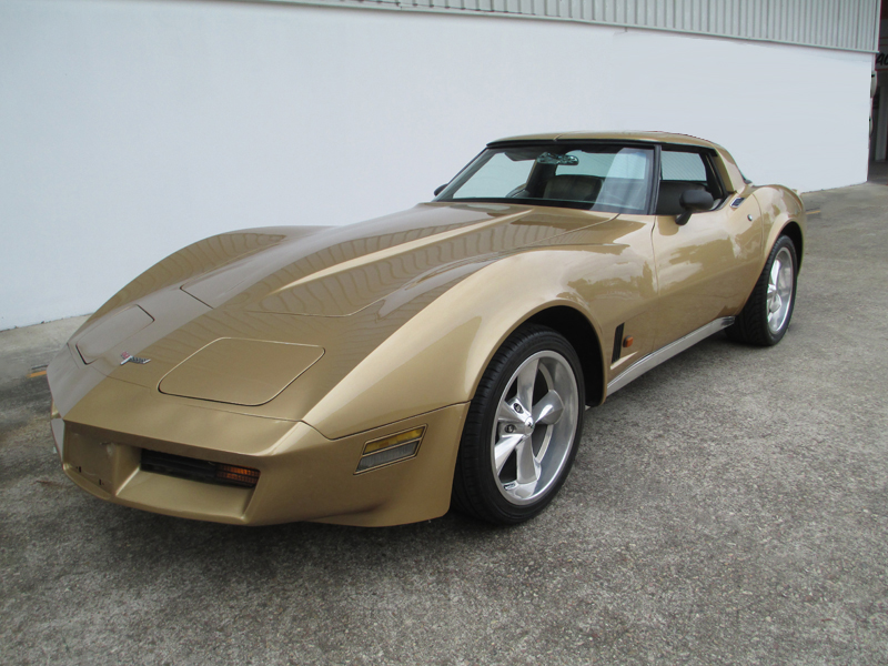 1981 Chevrolet Corvette Stingray - ol school garage  (64).jpg