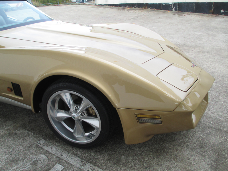 1981 Chevrolet Corvette Stingray - ol school garage  (68).jpg