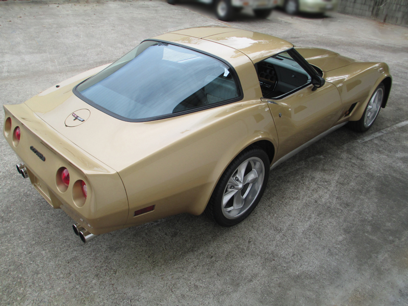 1981 Chevrolet Corvette Stingray - ol school garage  (69).jpg