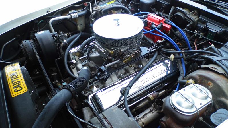 1982 Chevrolet Corvette (13).jpg