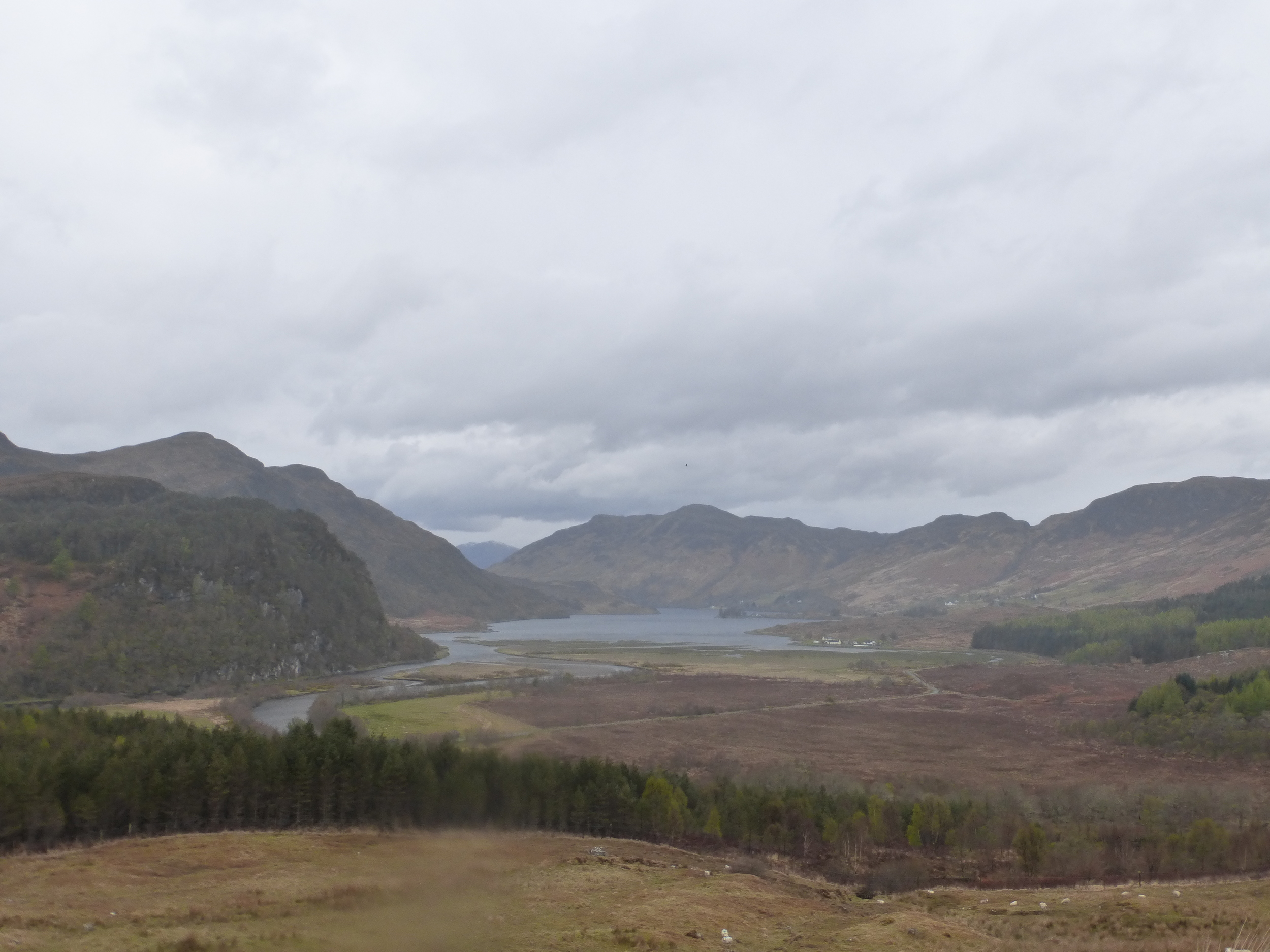 One of the few good views on Day 3.  This is the head of Loch Long near to Killilan