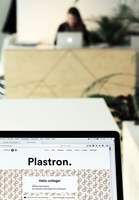 plastron07.jpg