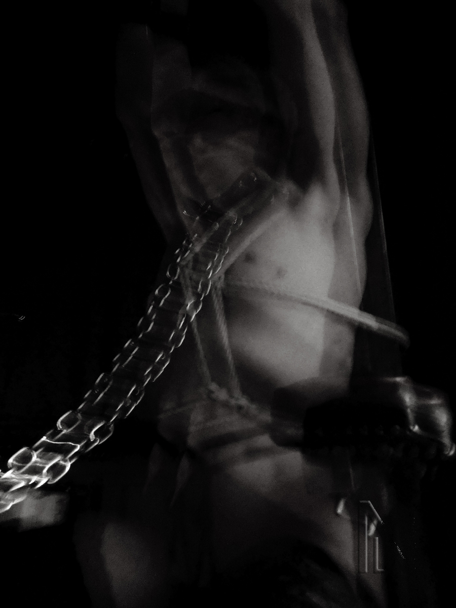 Suspended Animation by Nuit d'Or ©2012