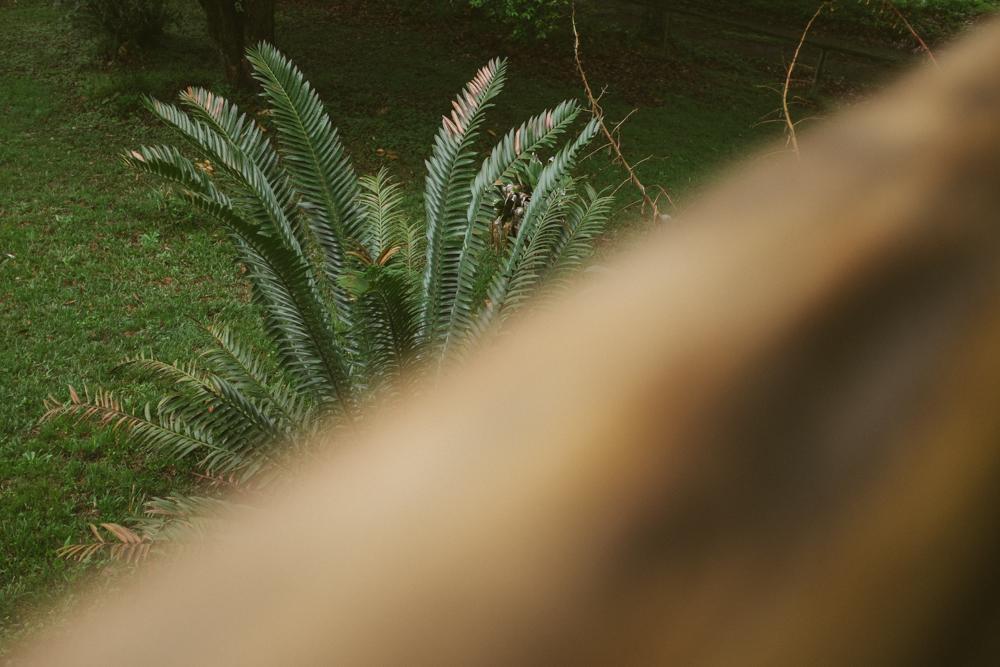 Old Pine Cabin Dylan Web-7.jpg
