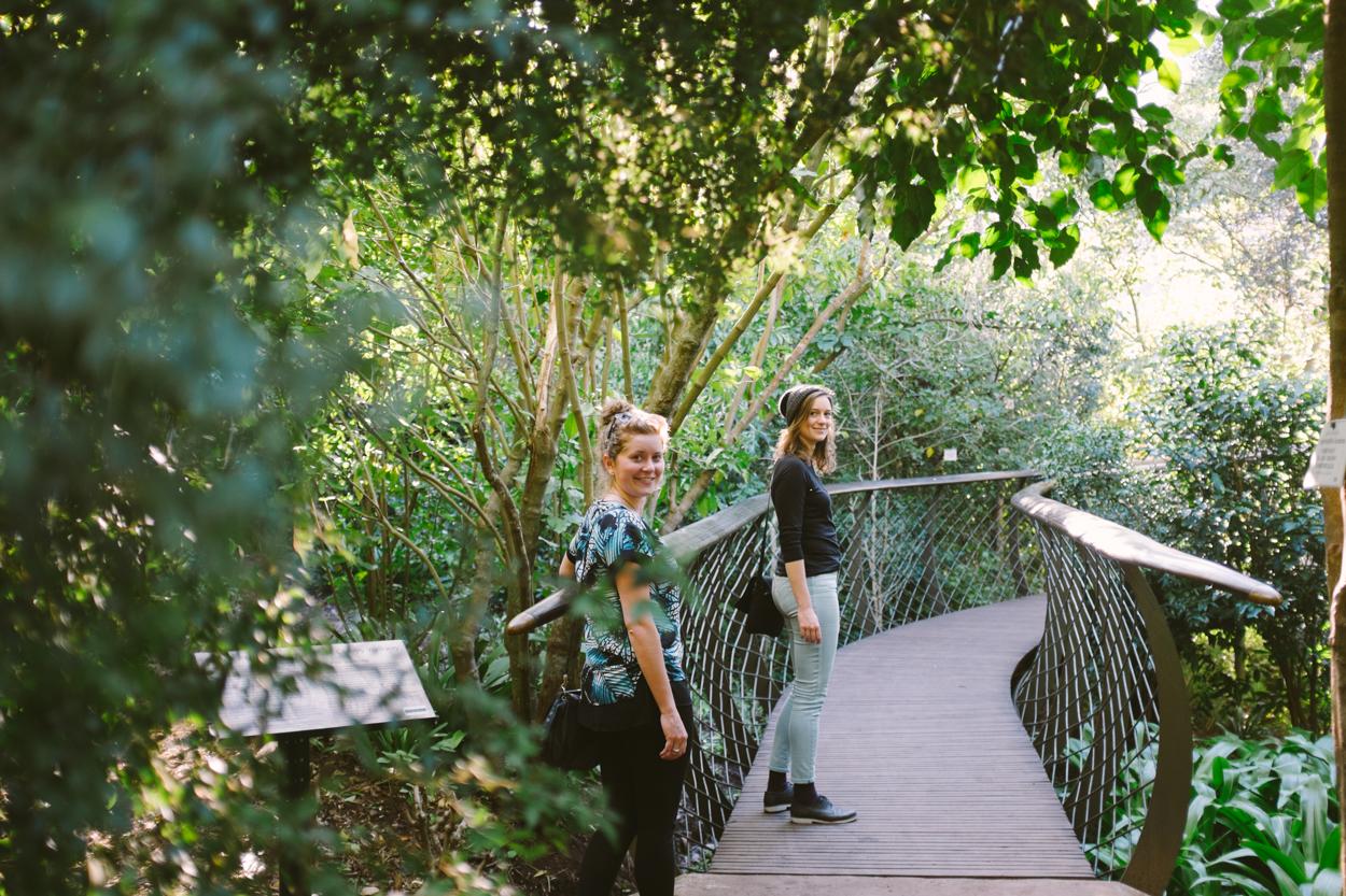 Road Trip & Safari Web-84.jpg