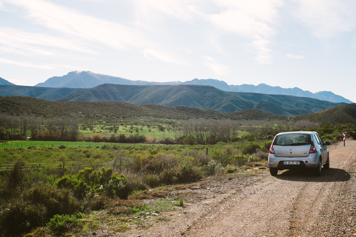 Road Trip & Safari Web-106.jpg