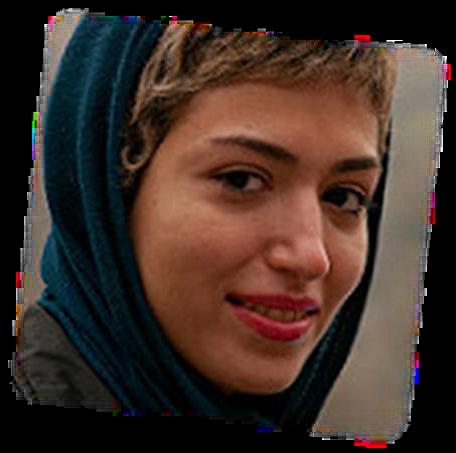 Iranians in Diaspora Trip Flyer Photo 2016.png