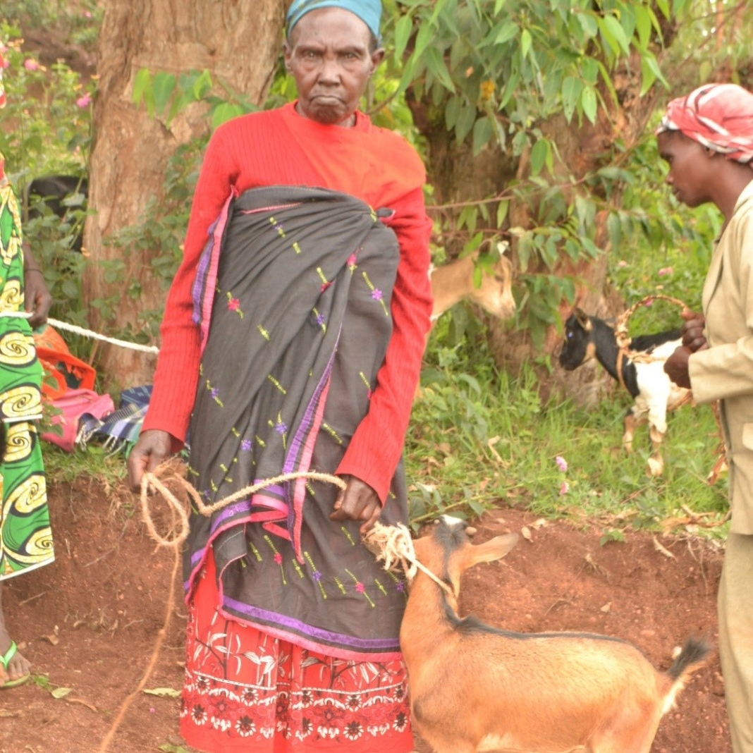 Patricia, a widow since 2016, is one of those who received the gift of a goat.