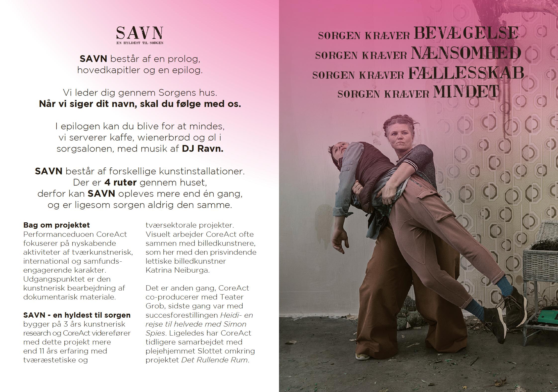 Program til SAVN 2017