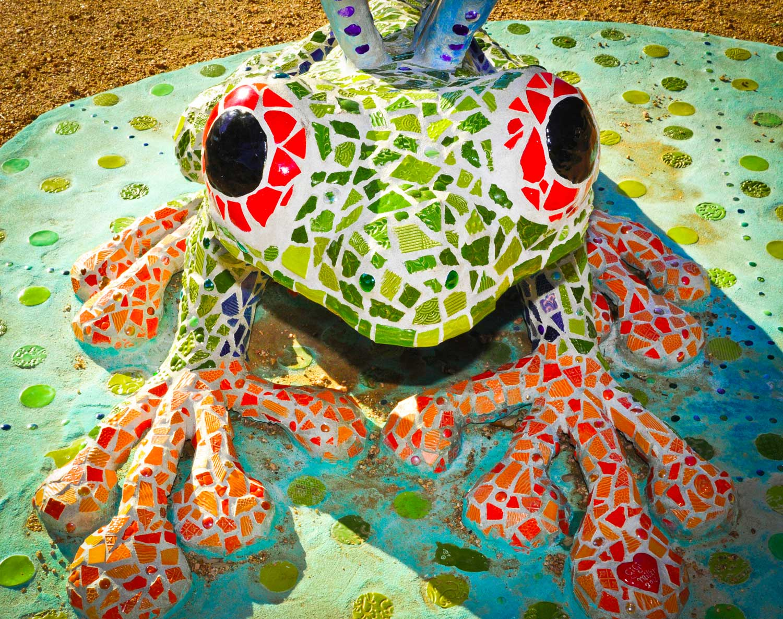 frog_front_web.jpg