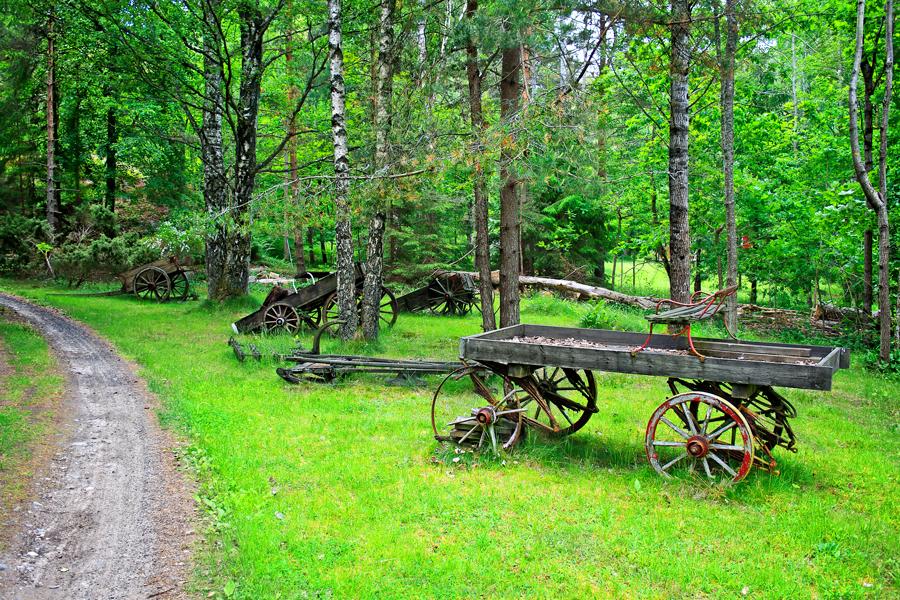Langs en landevei ved Ranvika (mellom Kjerringvik og Kjerringberget) møter du på flere gamle hestekjerrer.