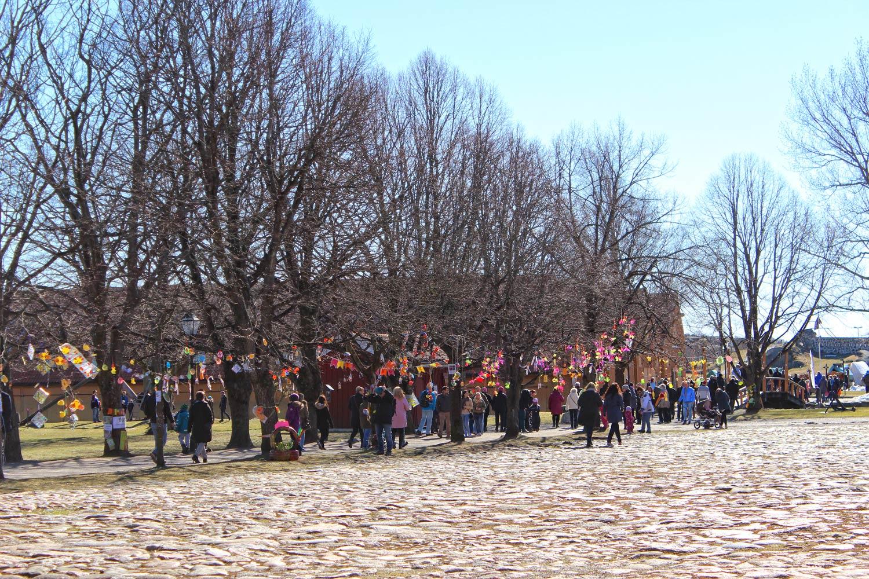 I tradisjonen tro har barna hengt fargerike og gøyale saker i trærne inne på Fredriksvern verft. Foto: Maria Gjøslien Metaxenioy/Vestfoldguide ©