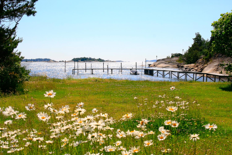 Landskap-og-kyst-veierland.jpg